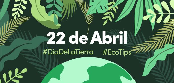 #DíaDeLaTierra: así es cómo TikTok impacta positivamente al planeta a través de la comunidad
