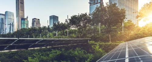Innovación mexicana en la lucha contra el calentamiento global