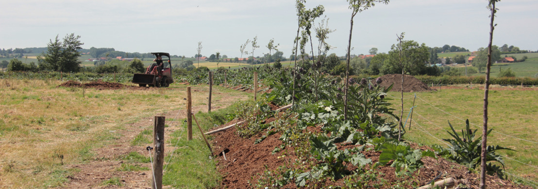 Boslandbouw langs hoogtelijnen in het Heuvelland: mogelijkheden en beperkingen