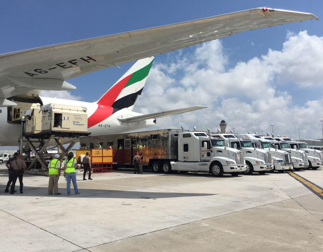 """تتميز """"الإمارات للشحن الجوي"""" بقدرتها على نقل أشهر خيول السباقات وضمان سلامتها وراحتها عبر العالم بفضل أسطولها الحديث ومرافقها المتطورة."""