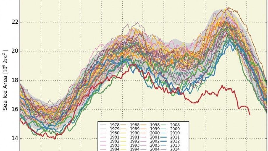 Global Sea Ice