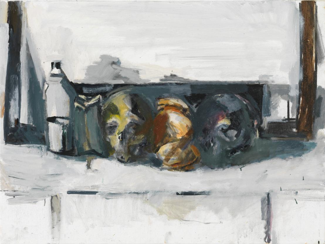 M brengt een solotentoonstelling van Vincent Geyskens