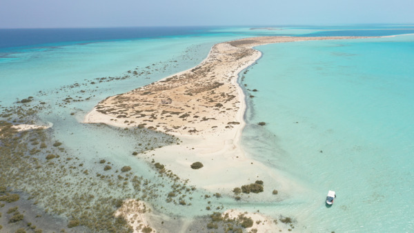 Preview: The Red Sea Development Company appoints Averda and Saudi Naval Support Company for the provision of waste management