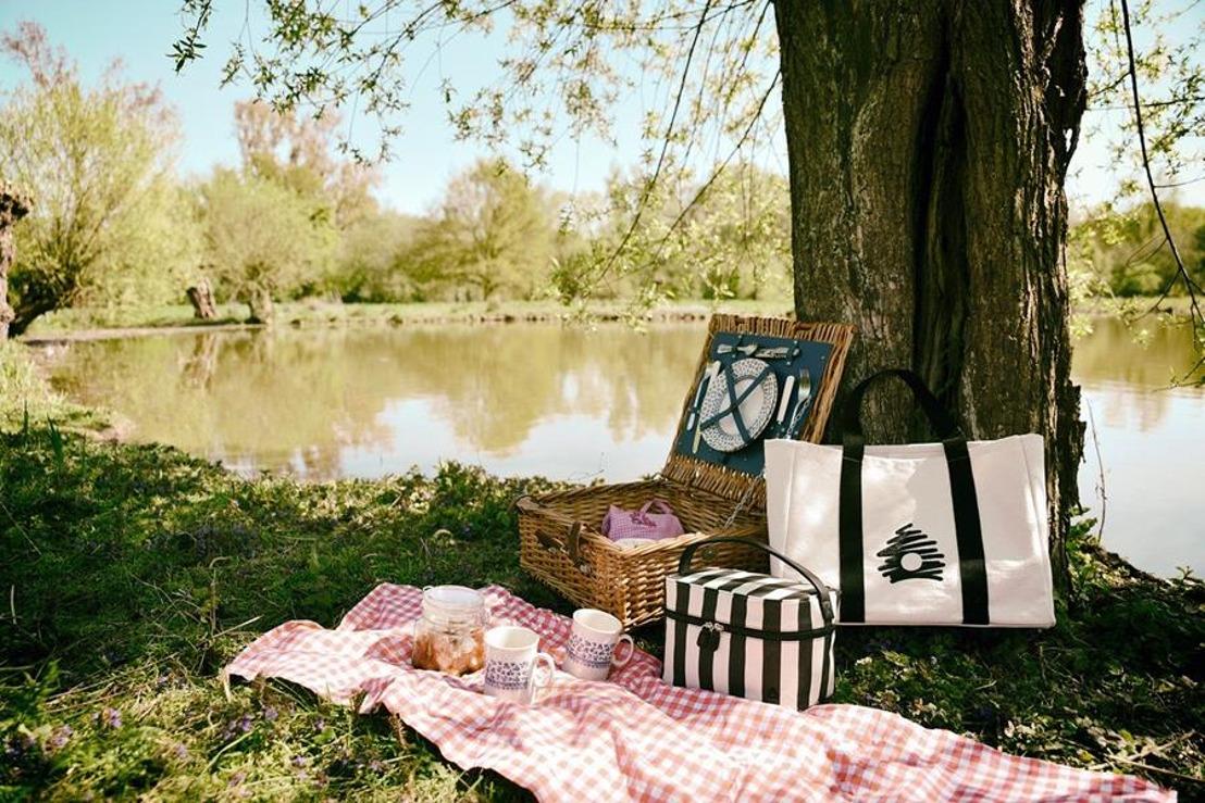 De ultieme stay-at-home picknick tips van DELIVEROO