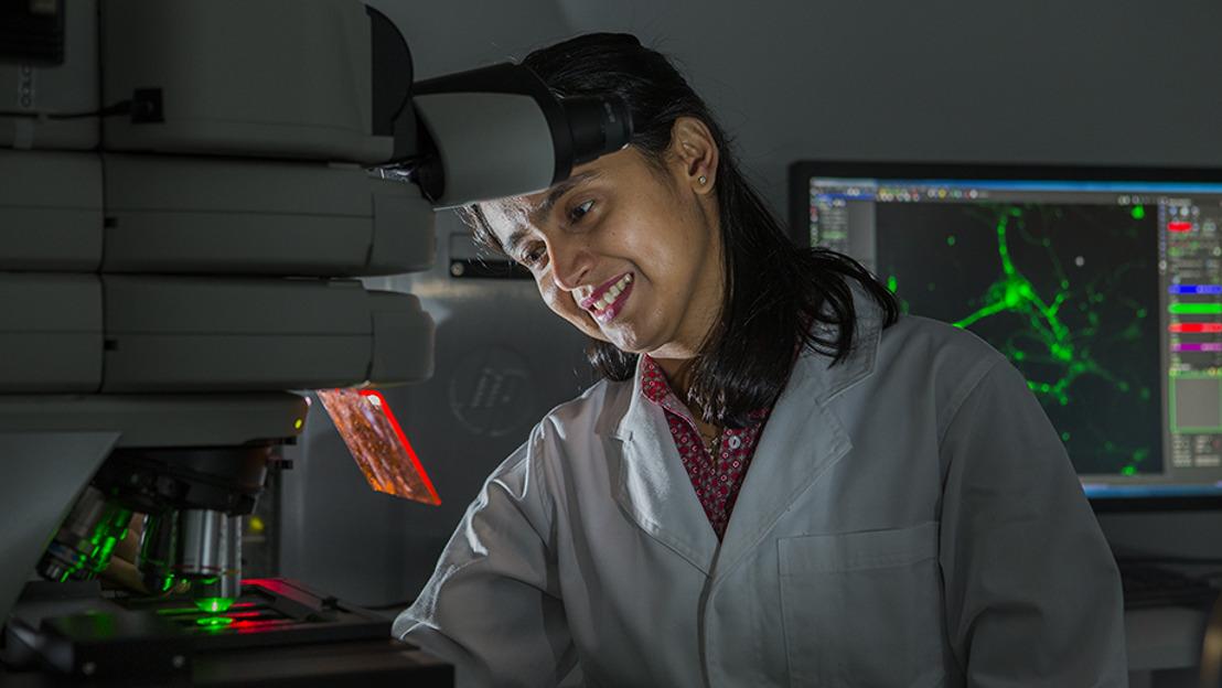 ANU researchers build brain-on-a-chip