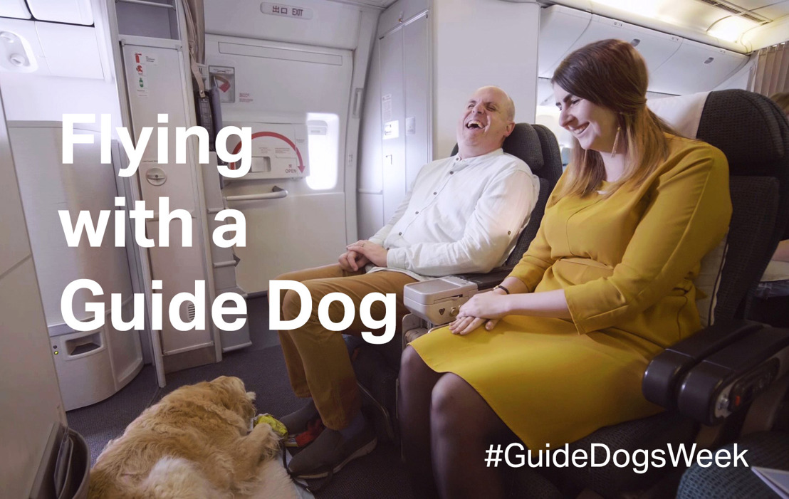What happens when a dog boards a plane?