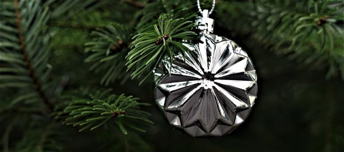 Lidl schenkt 15.500 verse maaltijden aan Voedselbanken dankzij kerstboomverkoop