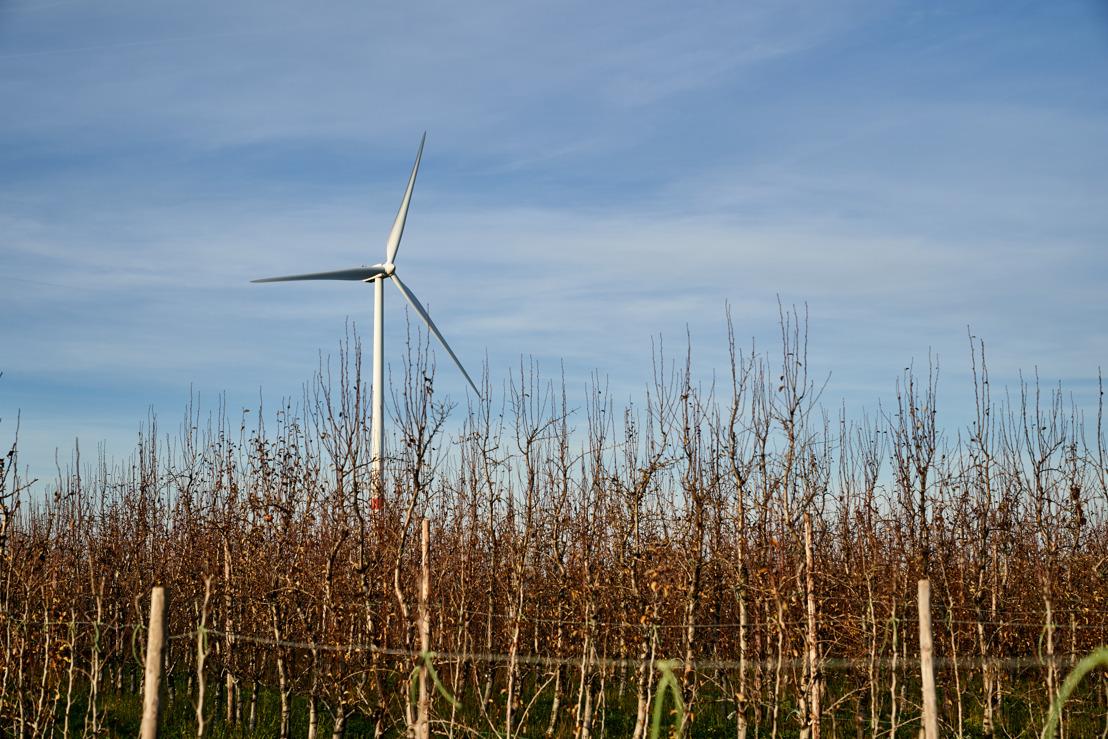 Un projet de 3 nouvelles éoliennes sur les communes de Yvoir et d'Assesse