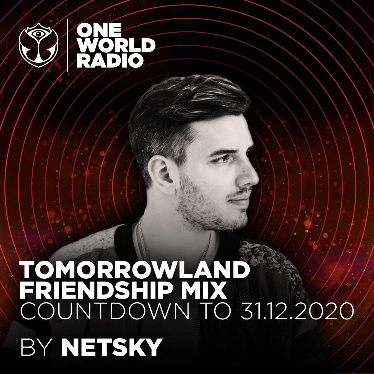 Tomorrowland Friendship Mix by Netsky