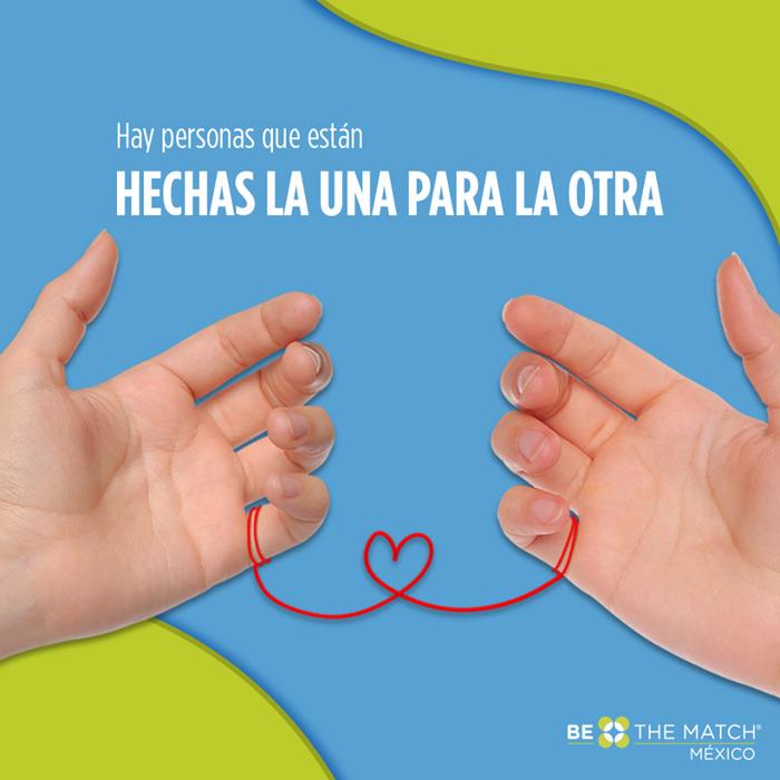 Preview: Día del trasplantado: conoce todas las partes del cuerpo que se pueden donar en vida.