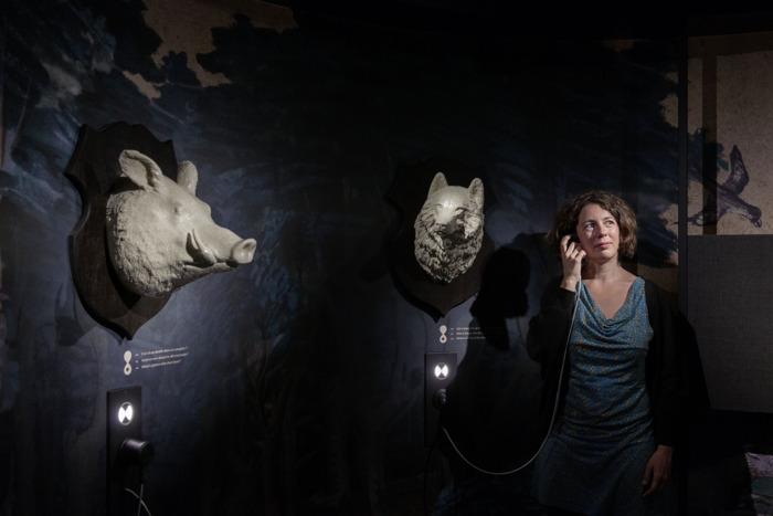 Le KBR museum : à la découverte d'un trésor caché depuis 600 ans