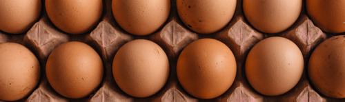 Húsvétkor is lesz friss magyar tojás a boltok polcain