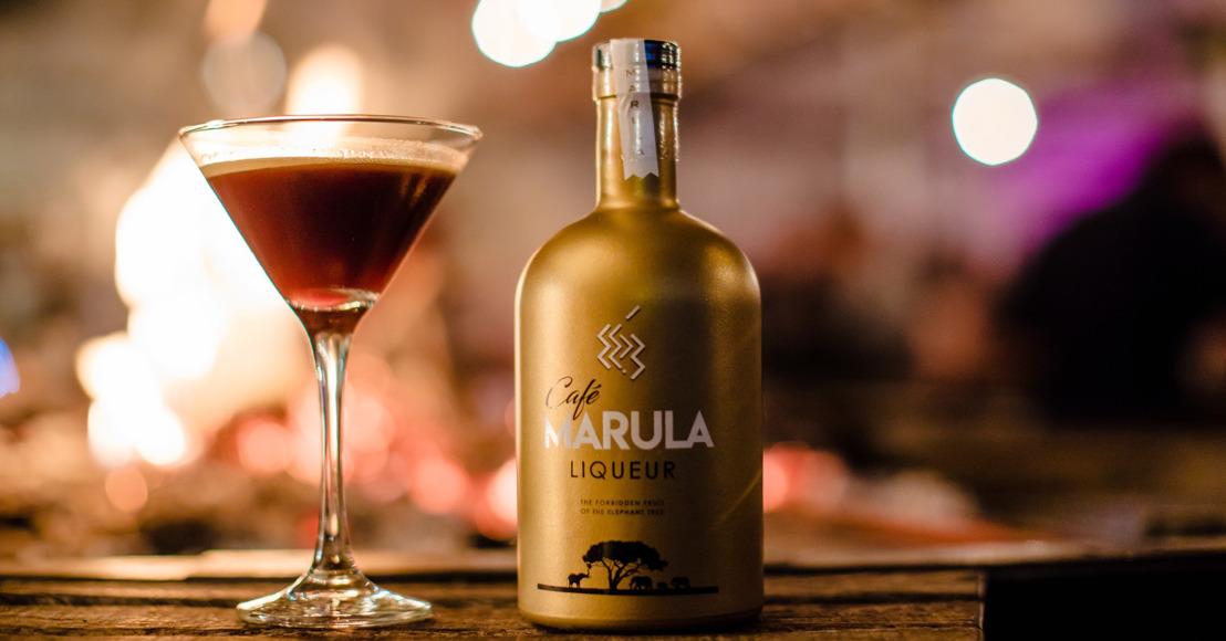 Succesvolle lancering Café Marula in Plein Publiek Antwerpen