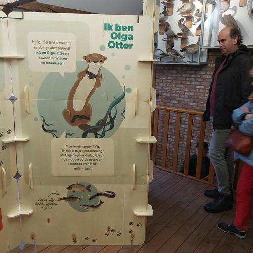Rondreizende otterexpo komt naar Blaasveldbroek