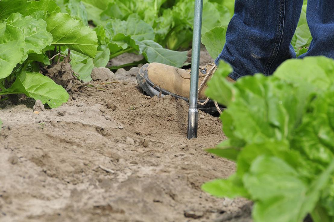 Al 3760 landbouwers vroegen nieuwe fosfaatklasse aan via SNapp