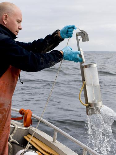Medins Havs och Vattenkonsulter och Seastar Survey: Lyckad blandning av sött och salt