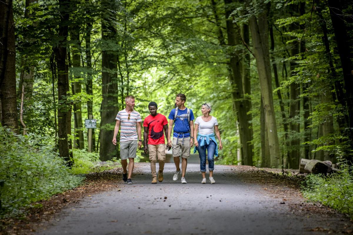 Men kan nu wandelen langs de virtuele knooppunten van het nieuwe wandelnetwerk Zoniënwoud (copyright Lander Loeckx)