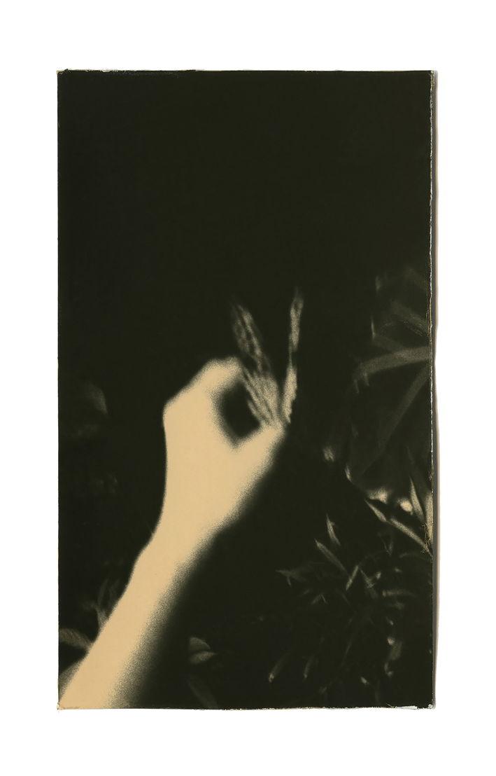 Miho Kajioka, BK0064, 2014. Toned gelatin silver print