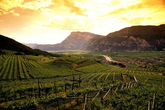 Trentodoc: scoprire il Trentino grazie alle bollicine di montagna