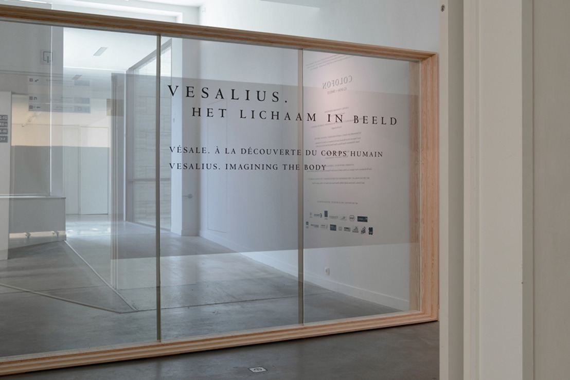 Andreas Vesalius gaat de wereld rond