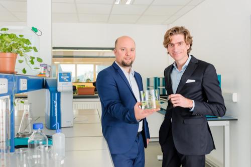 Botalys, le producteur wallon de ginseng, lève 3 millions d'euros et passe en phase industrielle à Ath