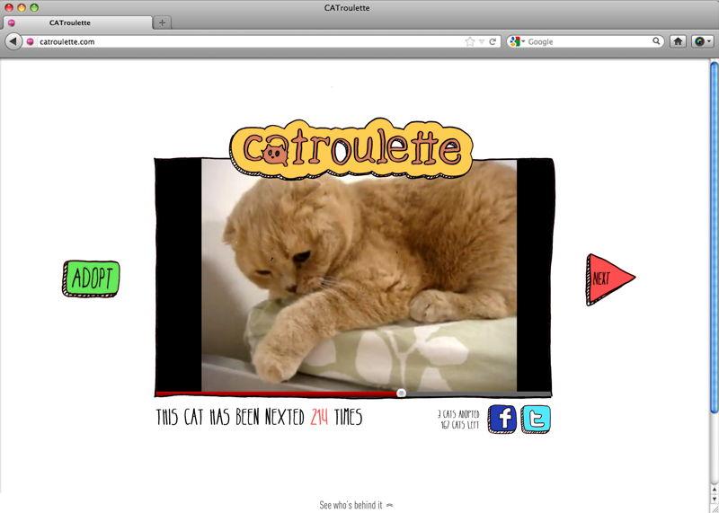 Catroulette 1