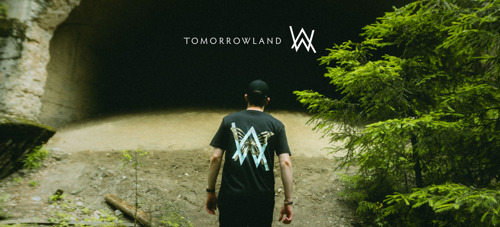 Tomorrowland x Alan Walker Collab Collection