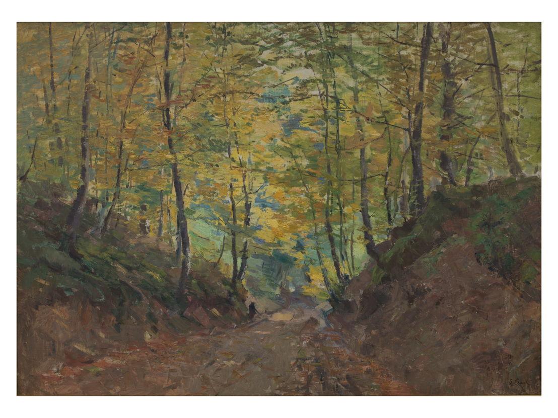 Lucien Frank, Wolvenweg te Tervueren in the Fall, <br/>De Brauwer (c) Isabelle Arthuis