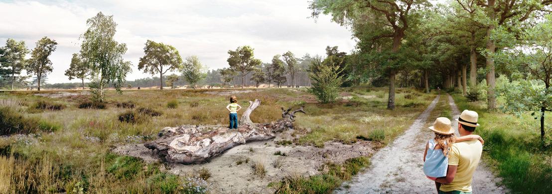 Most-Keiheuvel hotspot voor wilde bijen en trekpleister voor zeldzame vissoorten