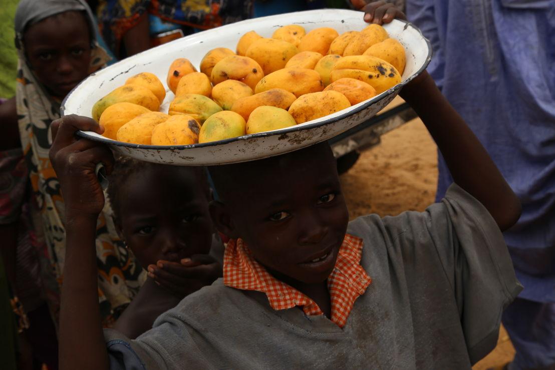 Displaced in Borno state. Photographer: Igor Barbero