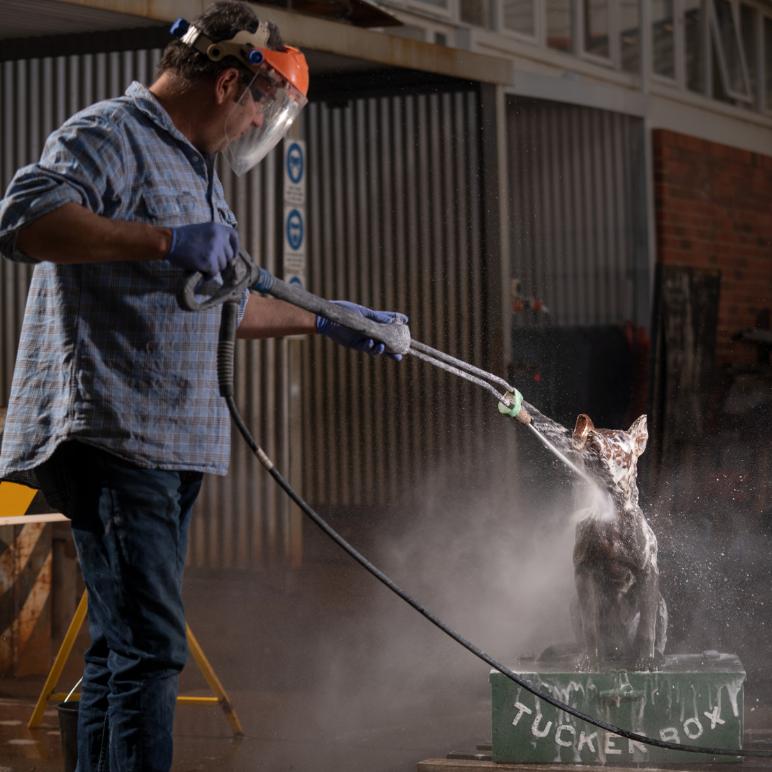 Old dog given new life thanks to ANU artist