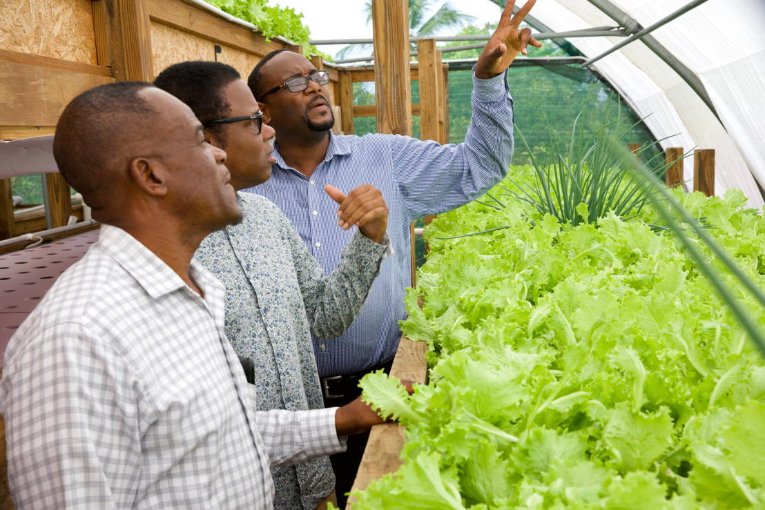 Minister Dean Jonas and distinguished colleagues inspect crop production using aquaponics.