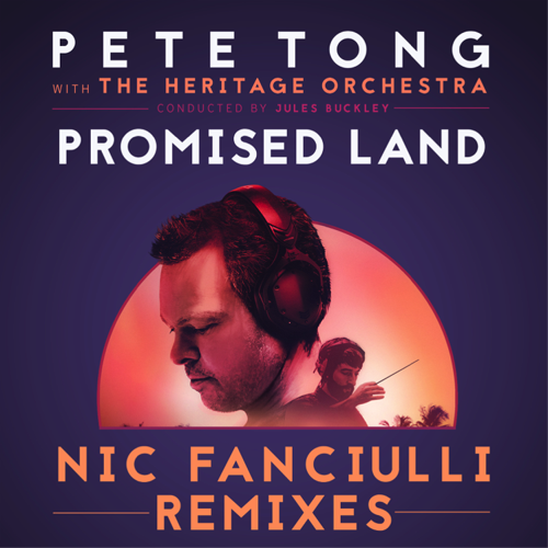 Preview: NIC FANCIULLI REMIXES 'PROMISED LAND' feat. DISCIPLES