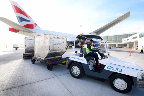 dnata starts operations at Concourse D in Dubai