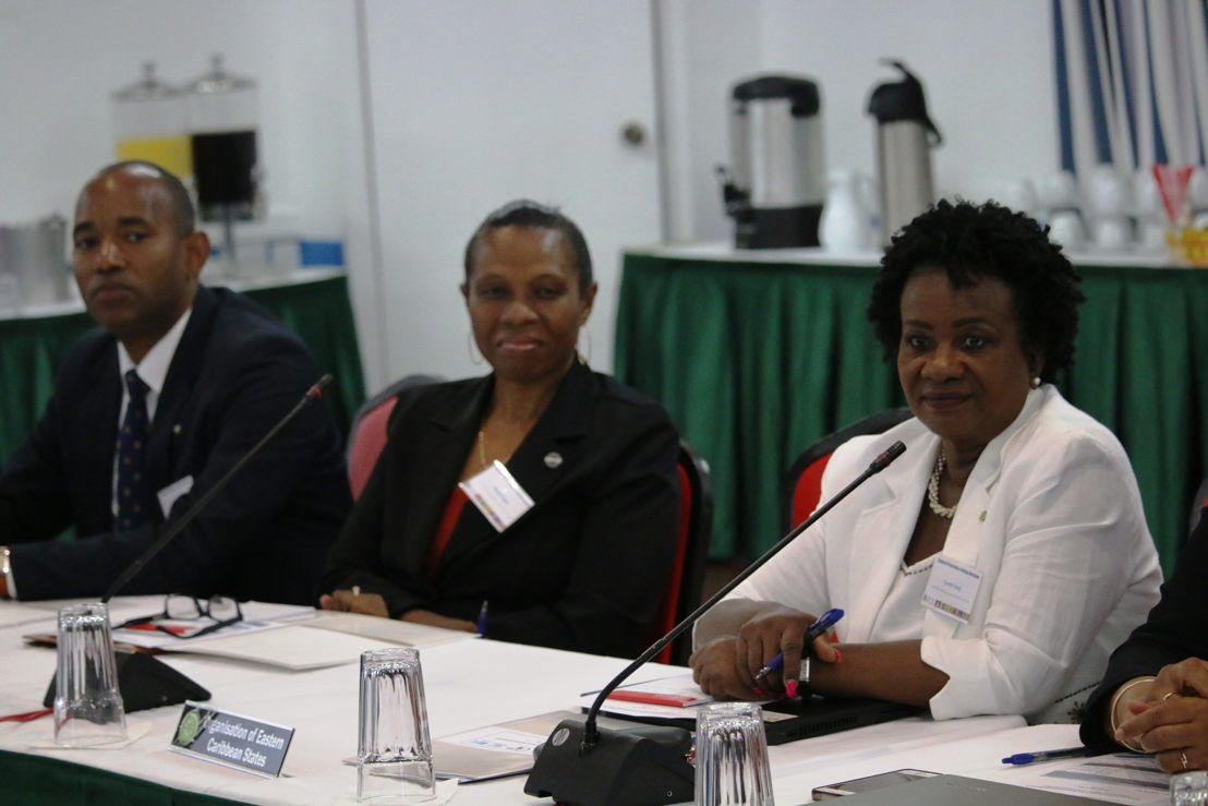 OECS TB/HIV Elimination delegation.