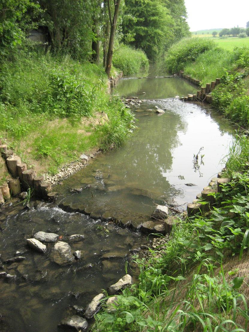 Op veel plaatsen zijn door de mens vervallen aangelegd die voor vissen niet te overbruggen zijn. Vistrappen vergroten het leefgebied van beschermde vissoorten.