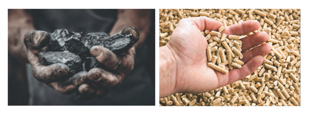 From coal to biomass, we integrate sustainability into our packaging business.