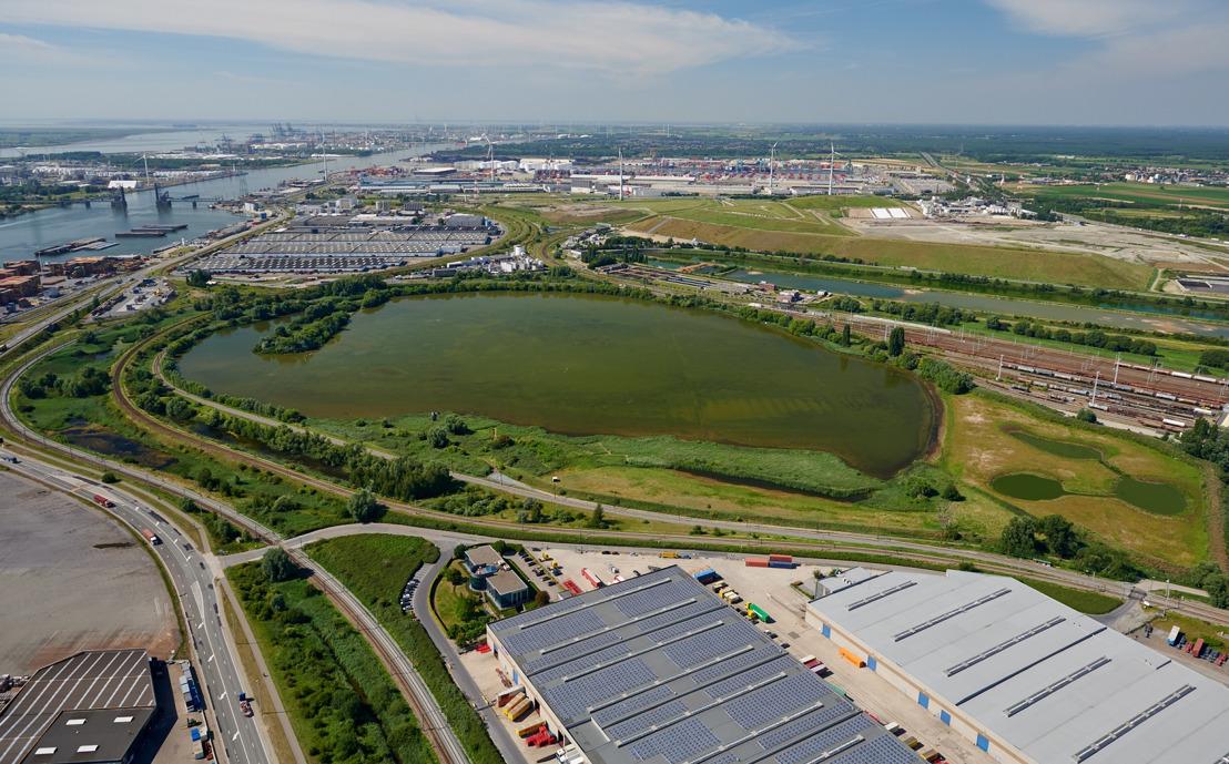 Der Hafen von Antwerpen übernimmt Vorreiterrolle bei der Ökologisierung europäischer Häfen