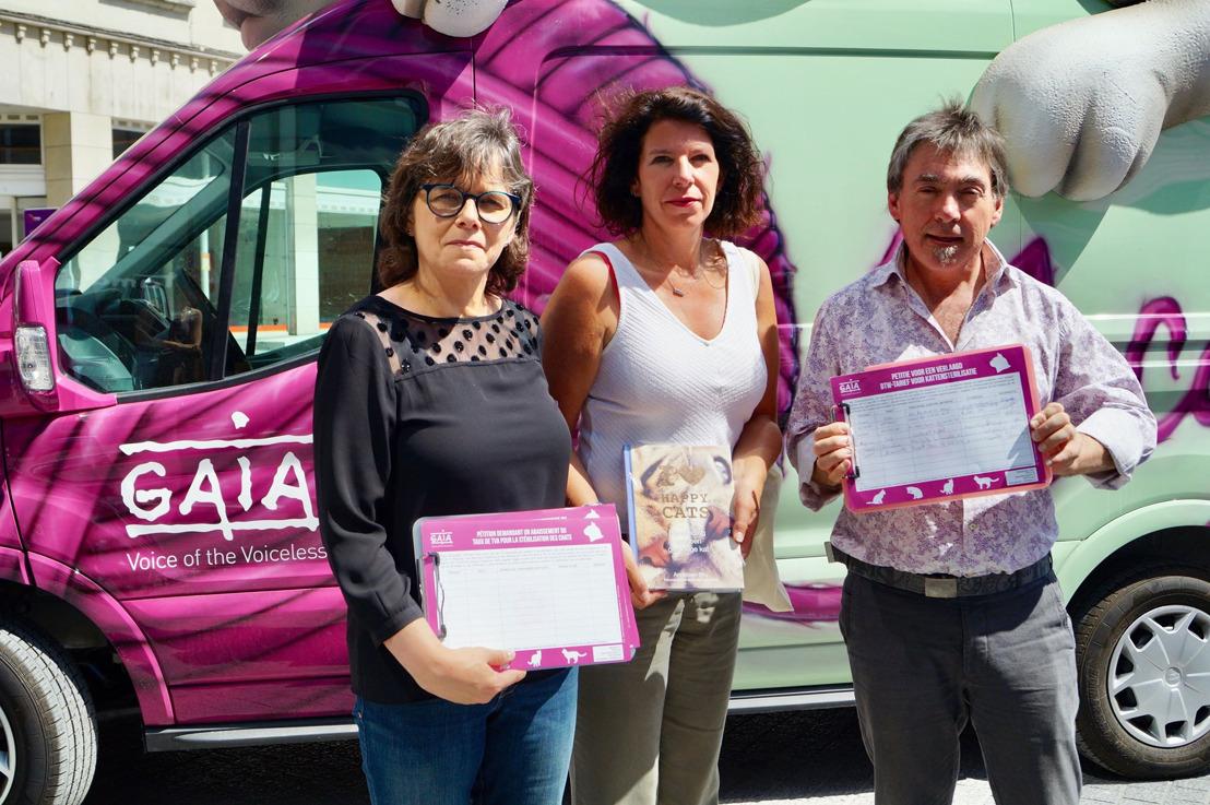 Tournée d'été de GAIA à Bruxelles : Bianca Debaets au volant de notre « catmobile »
