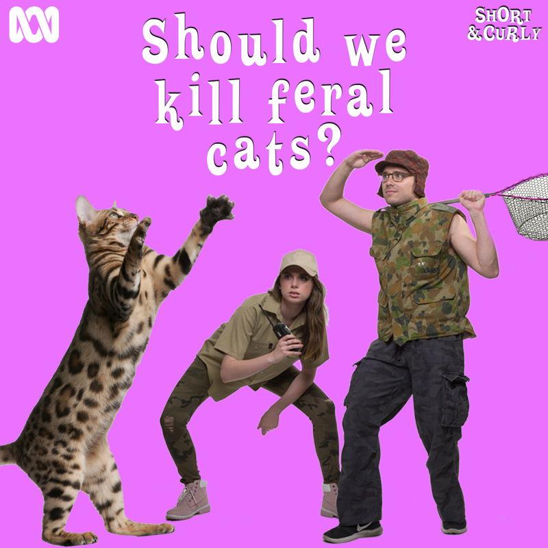 Should we kill feral cats? SQ