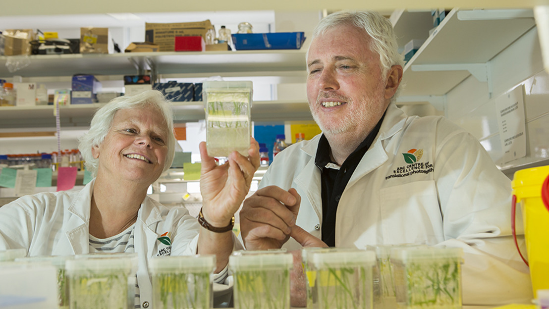 ANU research to help boost food production to feed the world