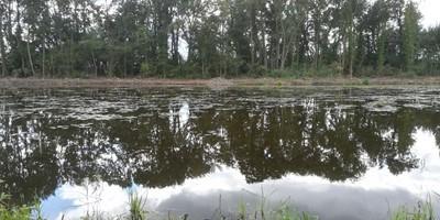Slib ruimen voor helder water in Kampenhout