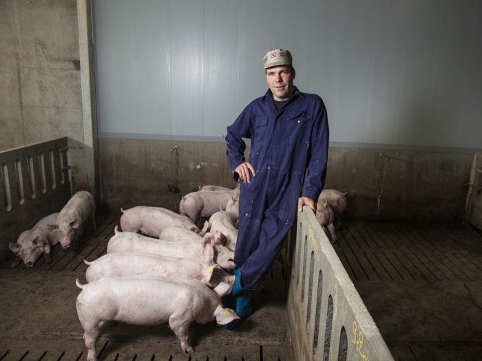 Lidl est le premier supermarché en Belgique à vendre exclusivement de la viande de porc durable
