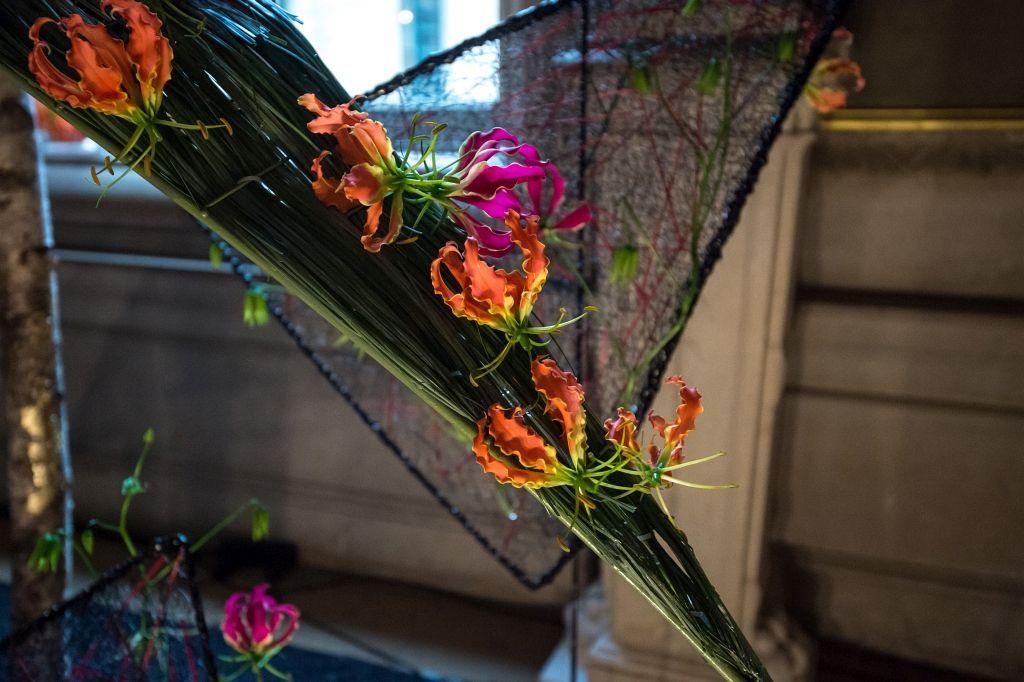 Flowertime 2015  - copyright Wim Vanmaele