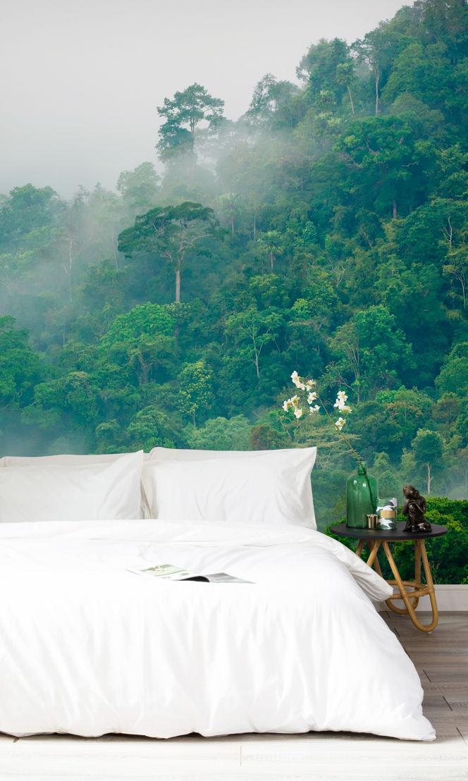 Misty Rainforest Wallpaper Murals