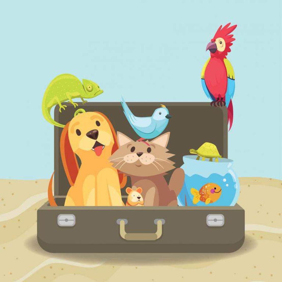 Checklist voor vakantie met dieren