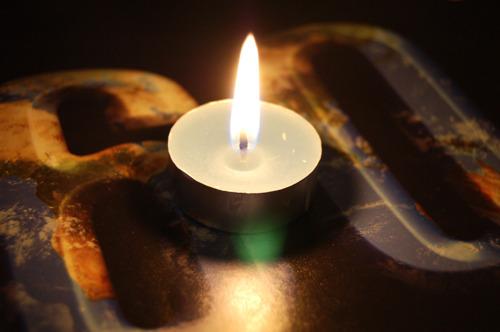 Earth Hour: klimaat en biodiversiteit zijn niet los te denken van elkaar