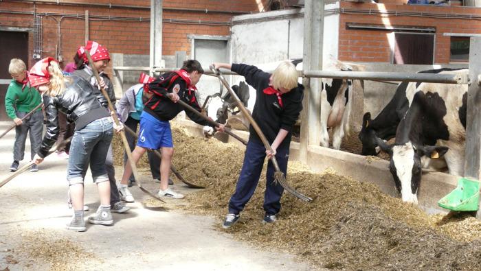 Provincie Oost-Vlaanderen zoekt bezoekboerderijen voor het netwerk Beleef de boerderij