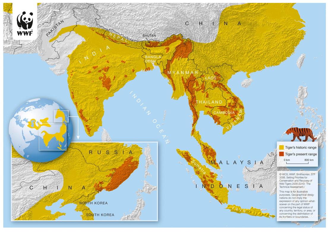Carte de l'évolution des territoires du tigre