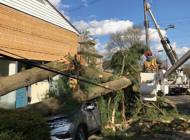 DLC Crews Restore Power to Nearly 39,000 Customers; Early Morning Winds Knock Additional 5,000 Out-of-Service